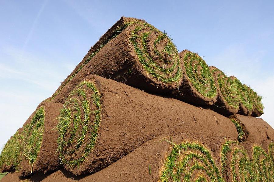 Rolls of turf suffolk